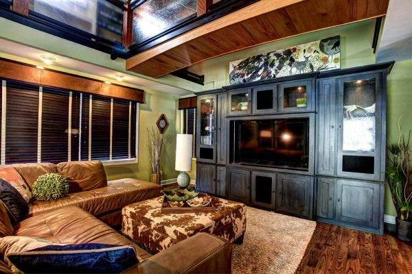 living-room-decorating-ideas-and-designs-remodels-photos-mindi-freng-designs-grand-rapids-michigan-united-states-modern-living-room-001