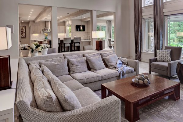 living-room-decorating-ideas-and-designs-remodels-photos-pleasant-living-llc-madison-wisconsin-united-states-transitional-living-room-002