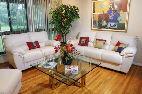 living room decorating ideas and designs Remodels Photos The Decorating TherapistColumbia Maryland United States contemporary-living-room