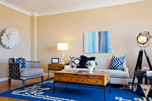 living-room-decorating-ideas-and-designs-remodels-photos-nina-jizhar-danville-california-united-states-contemporary