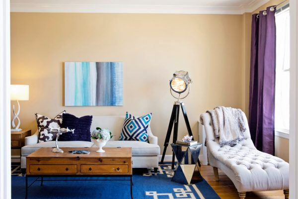 living-room-decorating-ideas-and-designs-remodels-photos-nina-jizhar-danville-california-united-states-contemporary-living-room-001