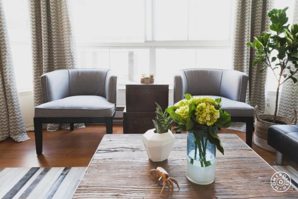 living-room-decorating-ideas-and-designs-remodels-photos-nina-jizhar-danville-california-united-states-contemporary-living-room-003