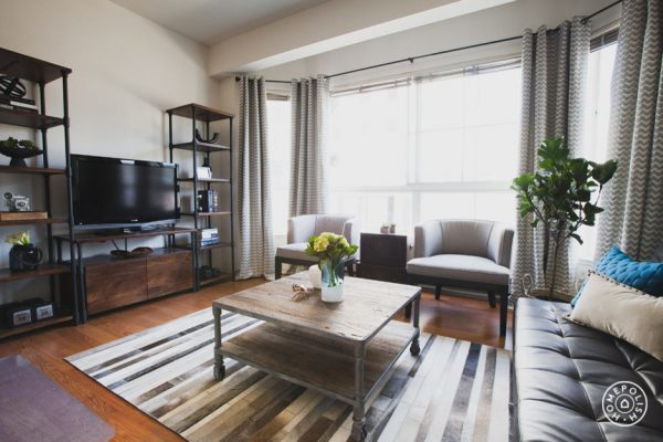 living-room-decorating-ideas-and-designs-remodels-photos-nina-jizhar-danville-california-united-states-contemporary-living-room-005