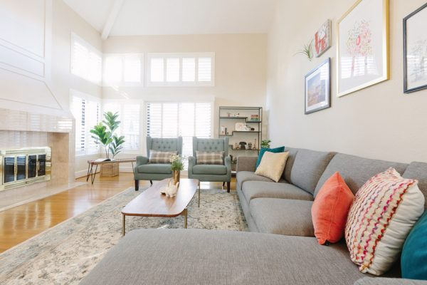 living-room-decorating-ideas-and-designs-remodels-photos-nina-jizhar-danville-california-united-states-contemporary-living-room-006