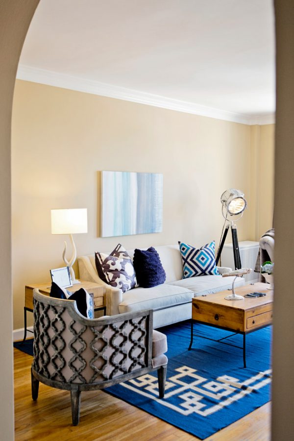 living-room-decorating-ideas-and-designs-remodels-photos-nina-jizhar-danville-california-united-states-contemporary-living-room