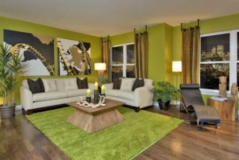 green and brown living room decor
