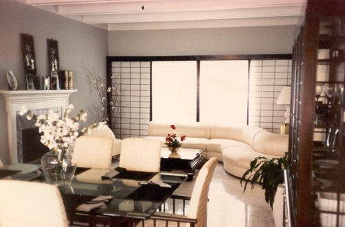 Living Dining Room Combo Stylish Decorating Ideas