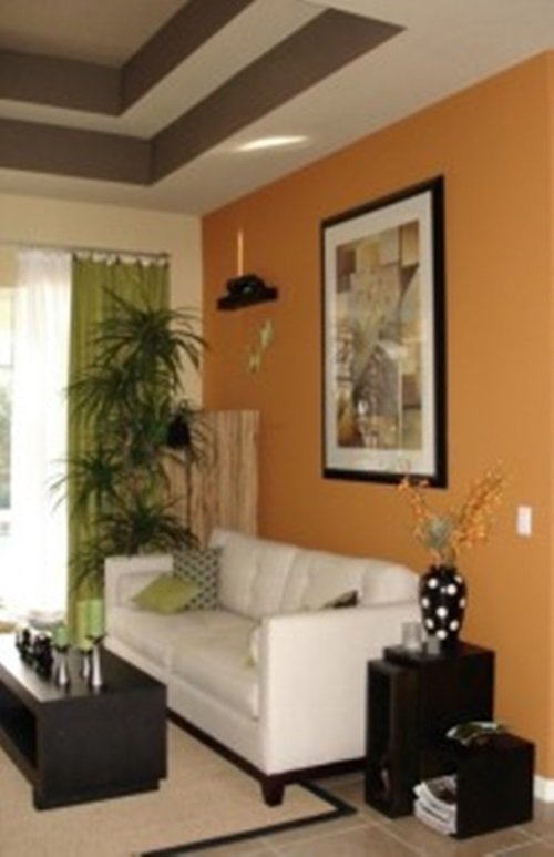 Living Room Paint Colors In Indian Home Painting