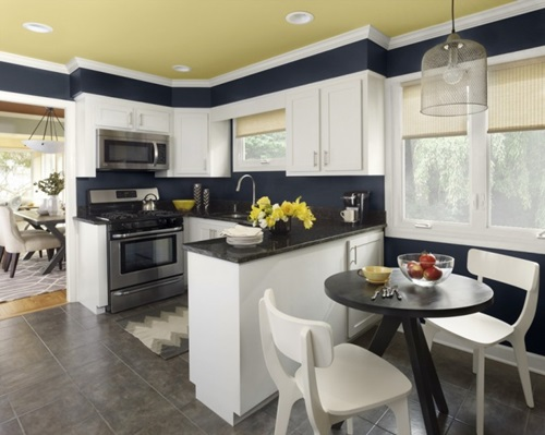 Kitchen Color Designs