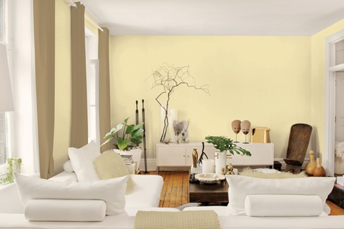 Living Room Walls with Decorative Paints - Interior design