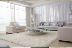 How to Arrange a White Living Room Correctly?!