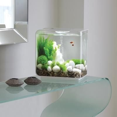 8 Dual Purpose Fish Tank Design Ideas