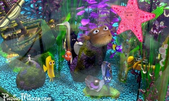 How to Design a Fish Aquarium by yourself