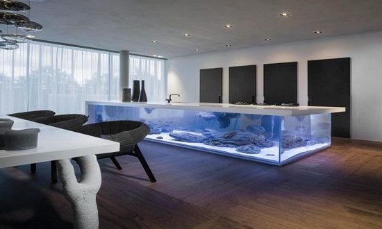 8 Dual Purpose Fish Tank Design Ideas Interior Design