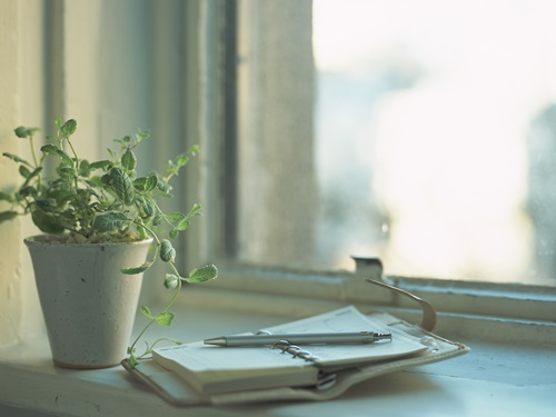 How to Create a Functional and Decorative Indoor Herb Garden