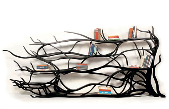 The Amazing Designs and Uses of the Bookshelves
